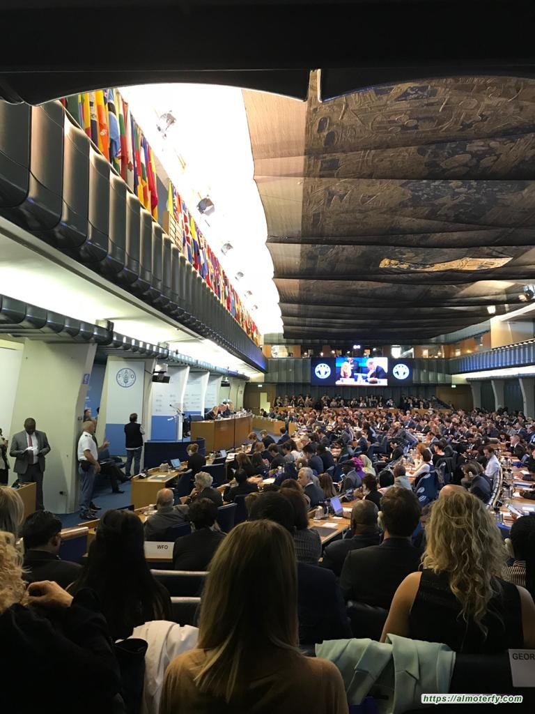 المملكة تفوز للمرة الرابعة بعضوية المجلس التنفيذي لبرنامج الأغذية العالمي حتى 2023م